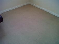 Stain Removal Colchester Carpet Cleaning Available This